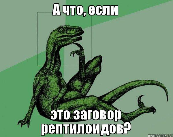 597ee36277c3a.jpg